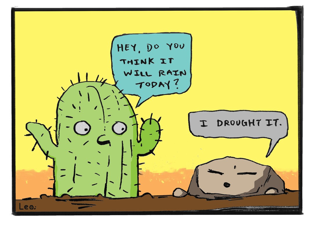 Cactus Question